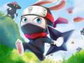 Games Ninja Rabbit